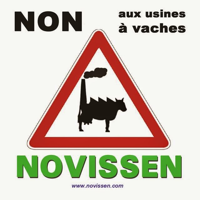 vachusine_non-2B080112-2Bcopie